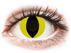 CRAZY LENS - Cat Eye Yellow - nedioptrické jednodenné (2 šošovky)